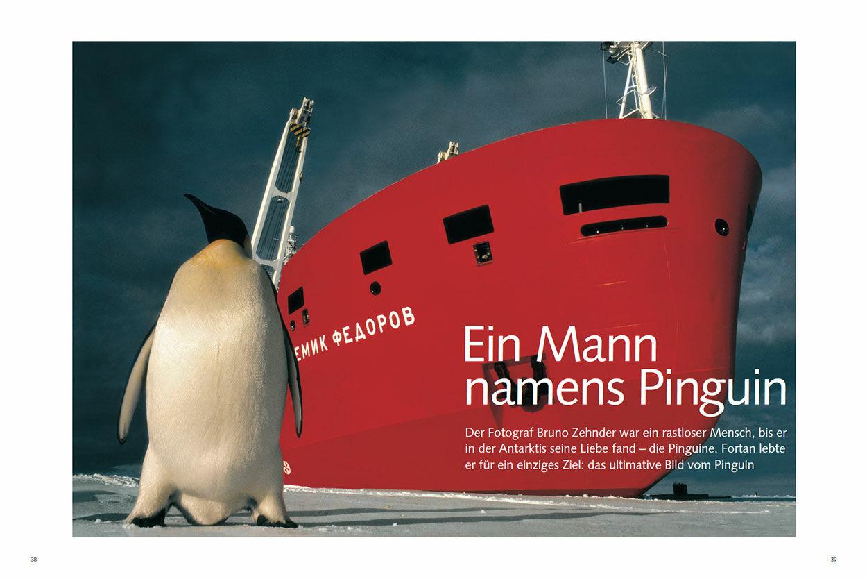 Ein Mann namens Pinguin