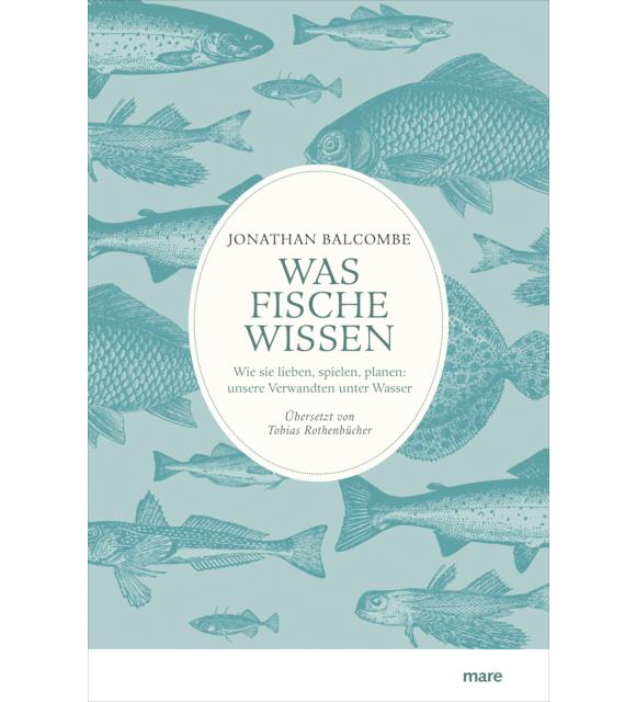 Was Fische wissen